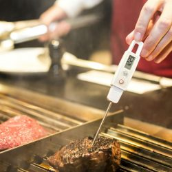 Best Grill Thermometers Reviews and Ratings